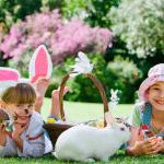 A Páscoa em casa é mais divertida - Planeje sua festa