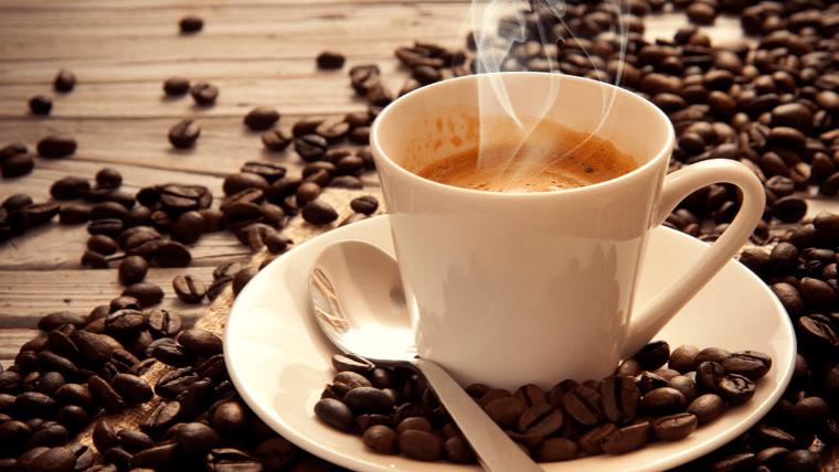 A cafeicultura no Espírito Santo e Nova Venécia