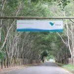 Lazer e consciência ambiental em Linhares