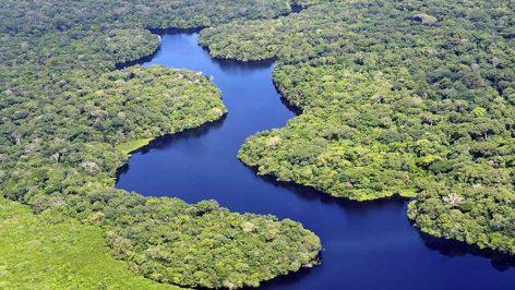 Neste 5 de setembro, a Amazônia está perto de todos nós