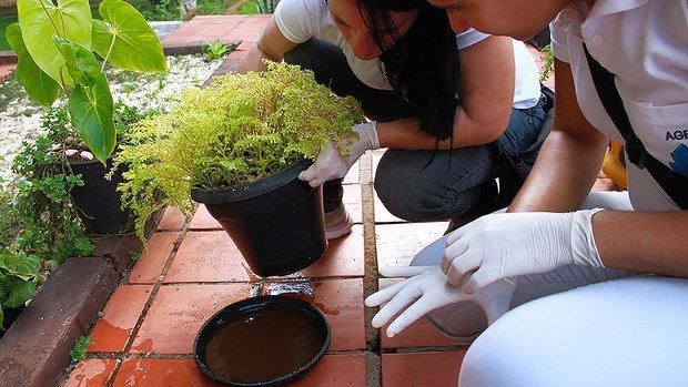 Gerenciamento de resíduos sólidos e um meio ambiente mais seguro