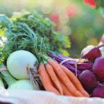 Horta em casa: vantagens de cultivar a sua