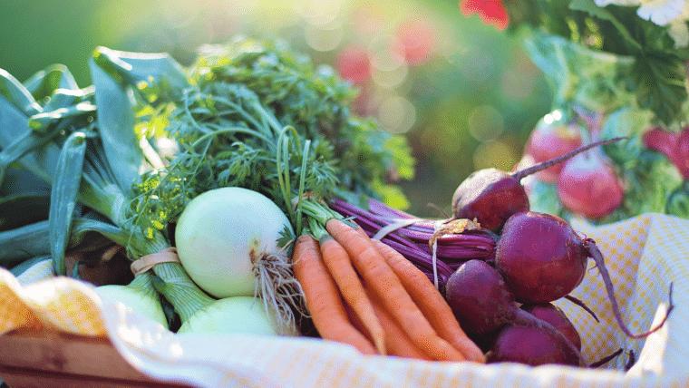 Horta em casa: 5 vantagens para você cultivar a sua própria