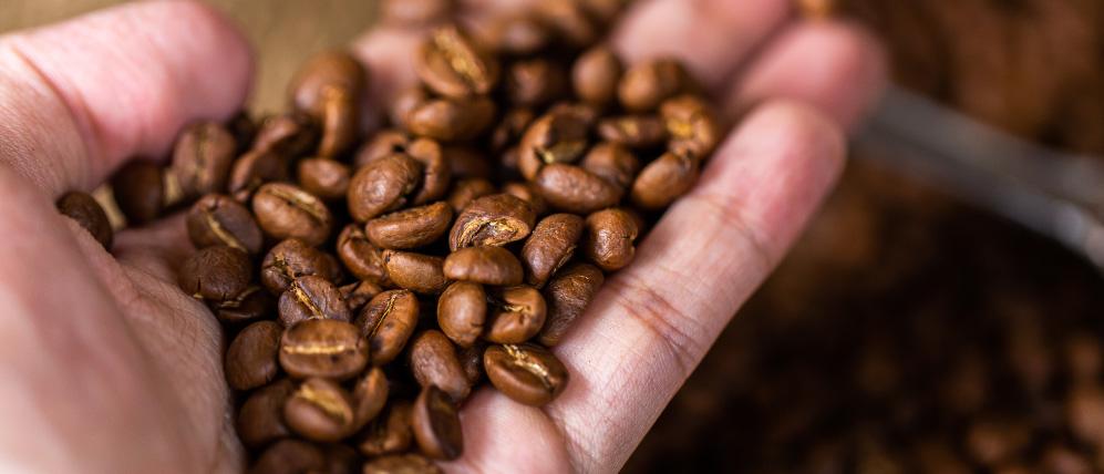 Dia do café: Conheça os locais onde é feito o café capixaba!